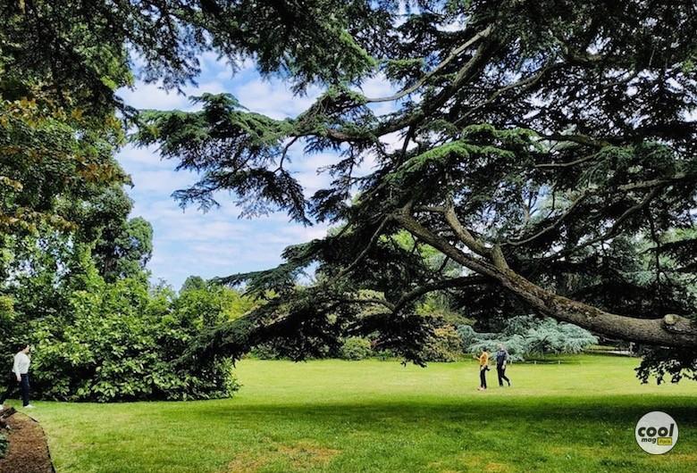 arboretum-chatenay-malabry-cover
