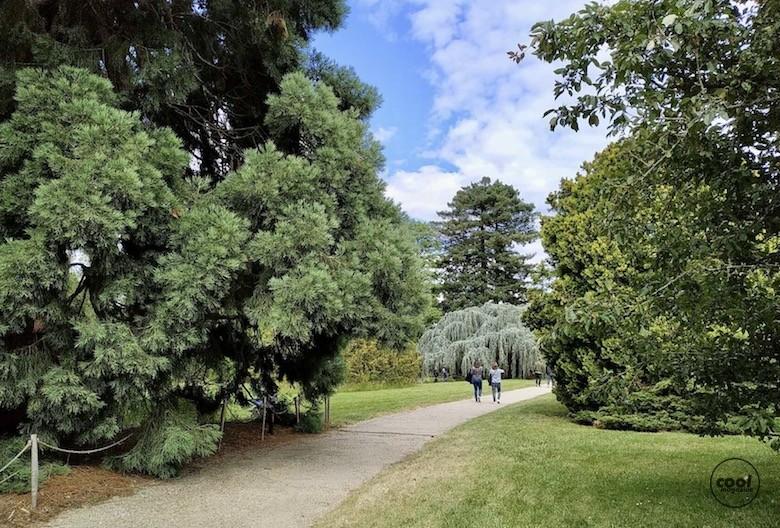 arboretum-chatenay-malabry10