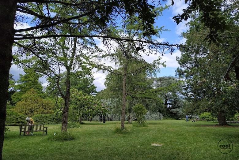 arboretum-chatenay-malabry11