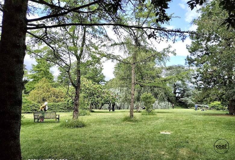 arboretum-chatenay-malabry12
