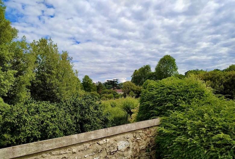 arboretum-chatenay-malabry17